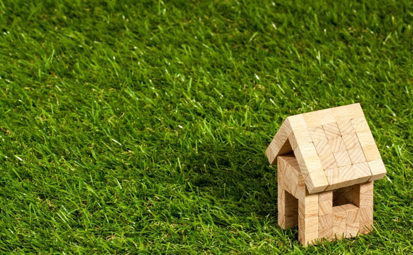 zielony dach konstrukcja